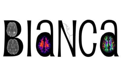 BIaNCA IDEA – fase II