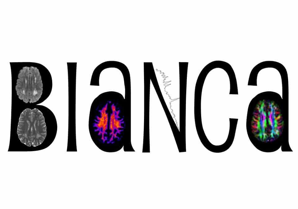 BIaNCA IDEA, Biomarker di Neuroimaging e approcci innovativi per la valutazione dei disturbi della sostanza bianca cerebrale nell'età dello sviluppo